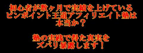 ピンポイント王道ロゴ.jpg